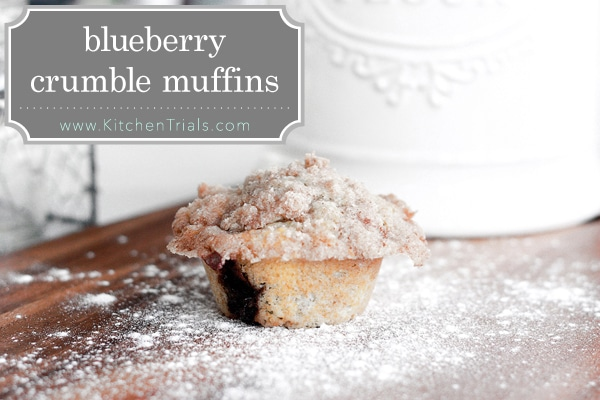 muffins blueberry crumble muffins something swanky blueberry crumble ...